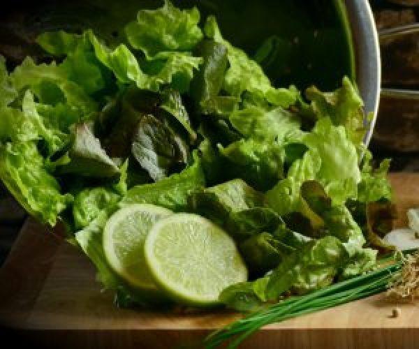 Kein guter Salat ohne gutes Salatdressing