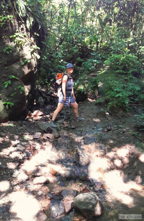 Wandern auf Martinique mit Kind - erst hoch zum Wasserfall, dann ...
