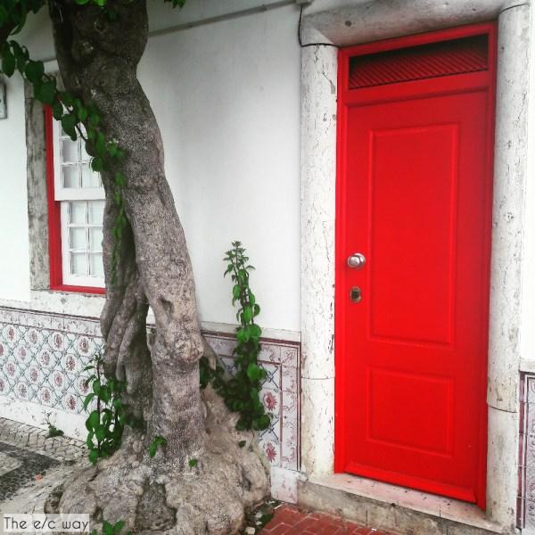 Besonders die bunten Details der Stadt wie Türen, Fenster und die weltberühmten Fliesen erfreuen das Auge
