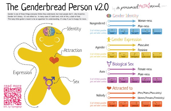 Genderbread person 2.0