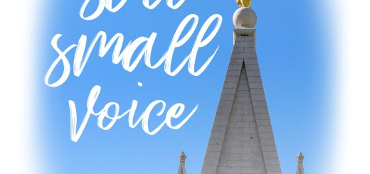 Listen to the still small voice: No vote before inauguration day. Heed your conscience.