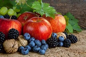 bountiful harvest © Photowitch | Dreamstime.com