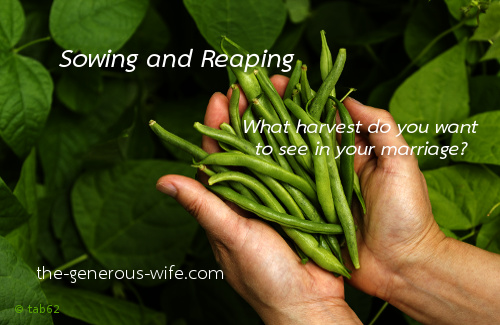 Sowing and Reaping - What harvest do you want to see in your marriage?