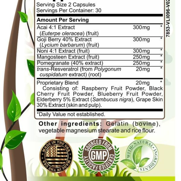 image of herbal forest super antioxidant support