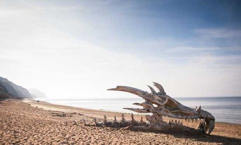 A Game of Thrones dragon skull on a beach in Dorset