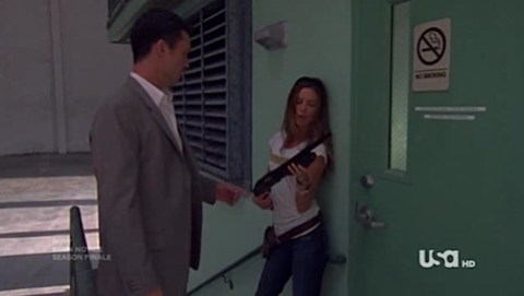 Burn Notice season 2.5 finale