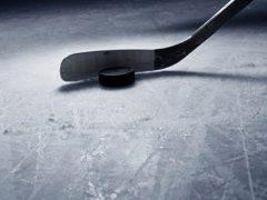 The Rink hockey_stick-e1510923621487 The Ten-Fold Path of the Goal Scorer skills Goal Scoring