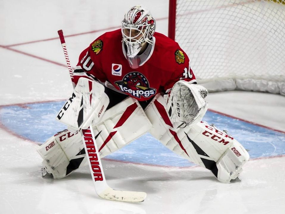 Early Edition Rockford Icehogs 2019 20 Roster 1 0 The Rink