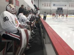 Chicago Blackhawks development camp