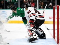 Lehner Stars Hawks Photo