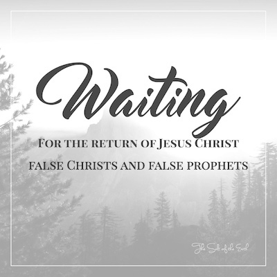 false christs and prophets