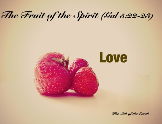 the fruit love