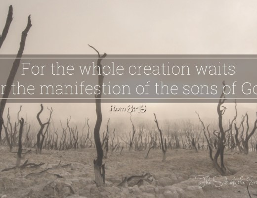 For the whole creation waits for the manifestation of the sons of God