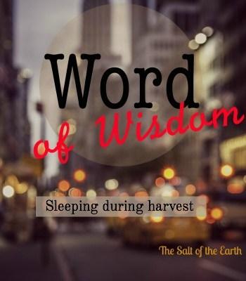 sleeping during harvest