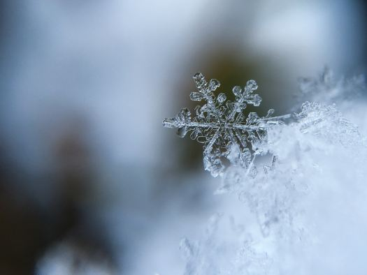 Snowflake - Photo by Aaron Burden - Unsplash