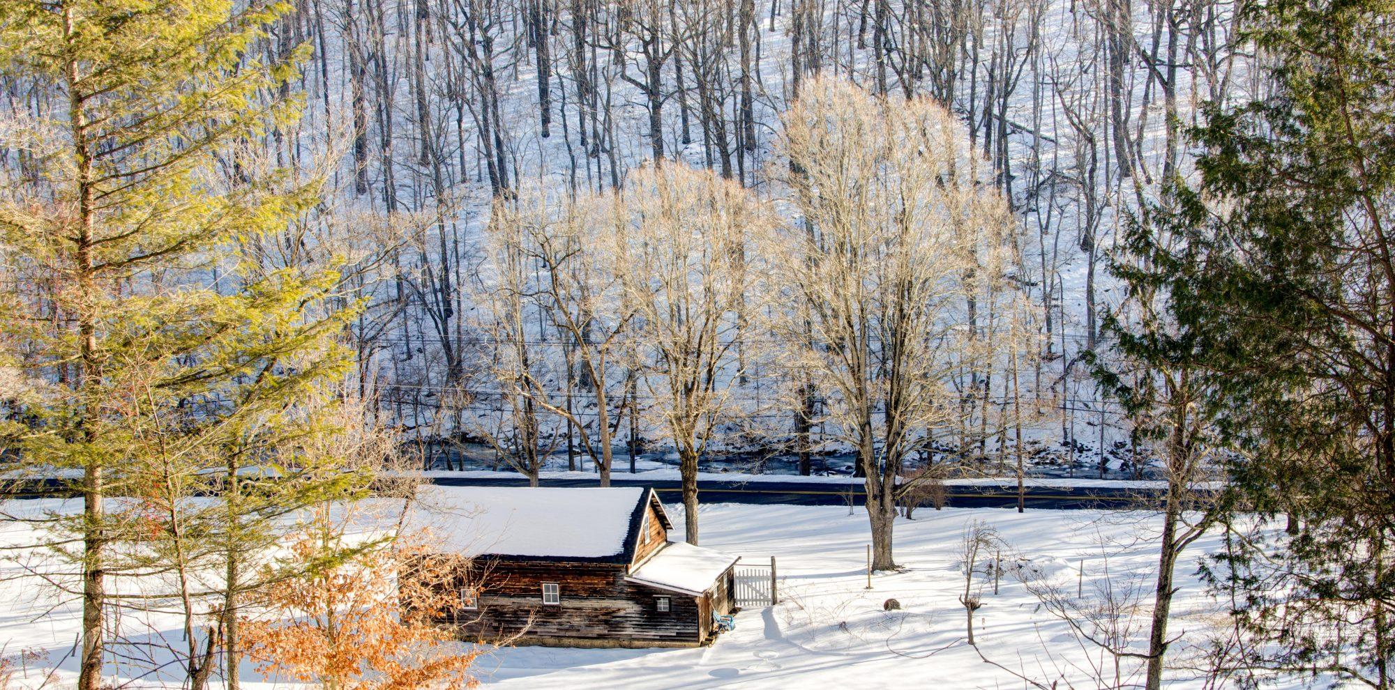 Snowy landscape - Photo by Khurt Williams - Unsplash
