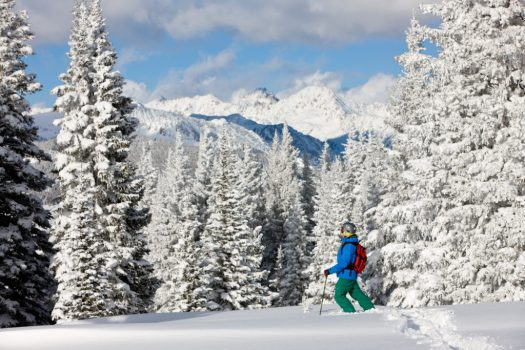 Powder Skiing in Back Bowls In Vail, CO. Photo: Vail Resorts. Alterra expects to sell 250,000 Ikon ski passes while Vail Resorts Epic Pass sales are up thanks to the $99 military pass.