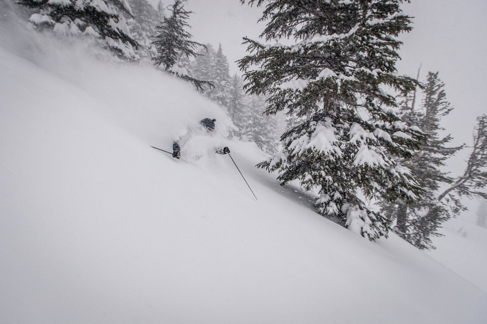 Mountain Collective pass has a collection of 16 resorts - 2 days per resort plus a third day on the resort of your choice- Mammoth Mountain - Photo: Mountain Collective.