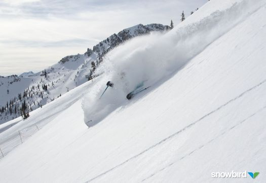 Nothing like the powder snow in Snowbird- Mountain Collective. 16 resorts, 2 days per resort