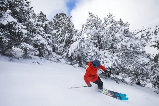 A skier enjoys skiing in powder near the trees. The continuity of Grandvalira guaranteed for the long term with the addition of Ordino Arcalís to their skiing experience. - Photo: Grandvalira.