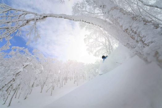 ...but the majority of skiers and boarders go to Japan for the powder! Rusutsu, the Japanese Resort joins the EPIC Pass for the 2019-20 ski season.