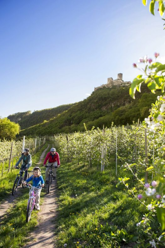 Photo: IDM South Tyrol / Alex Filz. Bicycle paths for the whole family wind their way through the south of South Tyrol, including the apple orchards at the foot of Hocheppan Castle. A Must-Read Guide to Summer in South Tyrol.