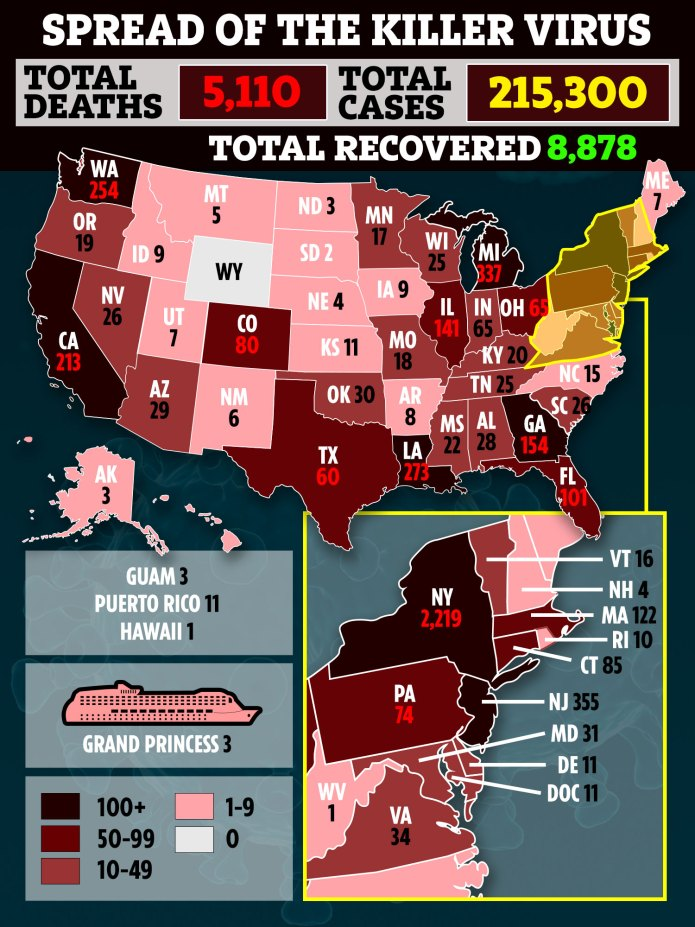 The United States is wiped out by the coronavirus