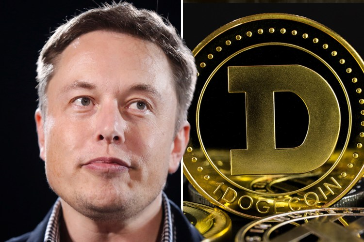 Dogecoin price soars to all-time high as Elon Musk spurs ...