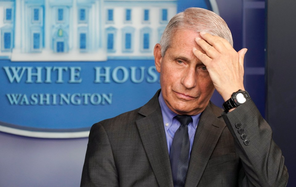 It's unclear what Fauci did to warrant Owens' ire