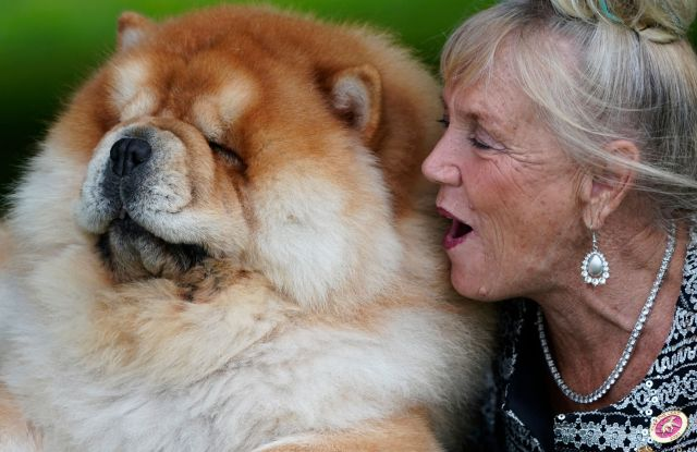Barbara Becker and her Chow Chow share a moment