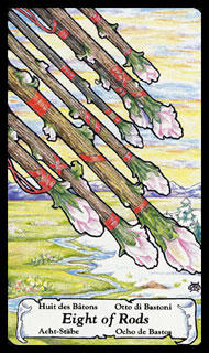 Betekenis Tarotkaart Staven Acht