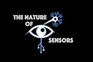 The Nature of Sensors