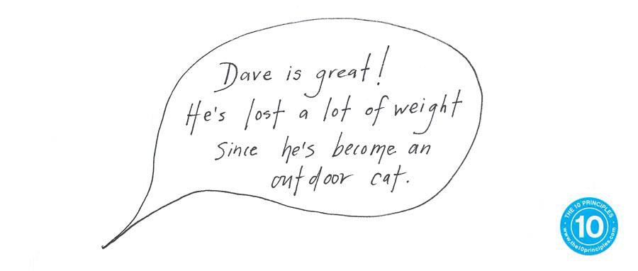 Dave is great. He's lost a lot of weight since he's become an outdoor cat