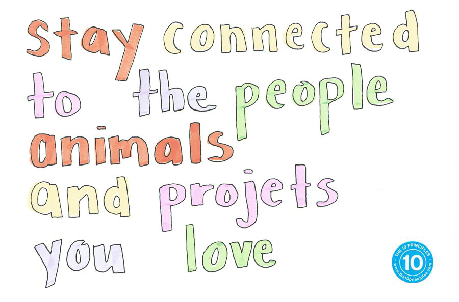 connected to the people, animals and projects you love