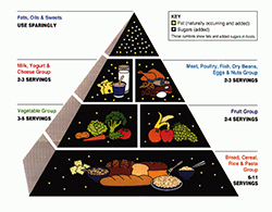 American Food Guide Pyramid