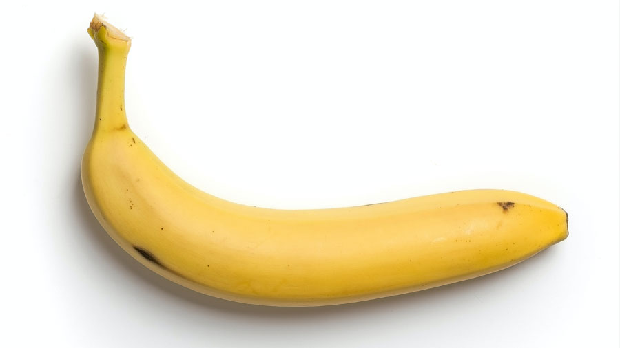 break the diet cycle - And even my fear of bananas!