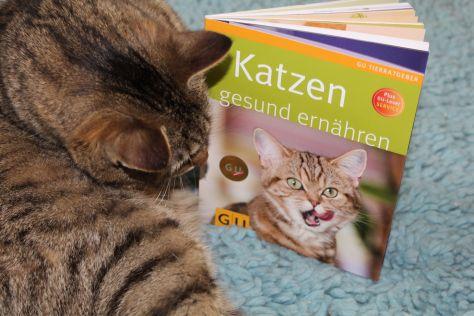"""Jasper: Buchrezension """"Katzen gesund ernähren (GU)"""" von Dr. Streicher"""