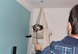_the3cats_2014_01_12_8811
