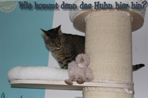 Linus: Der schiefe Turm von Mieza