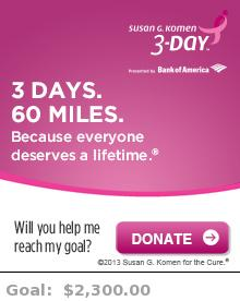 Help me reach my goal for the Susan G. Komen Michigan 3-Day