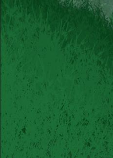 Green Flower Stocks