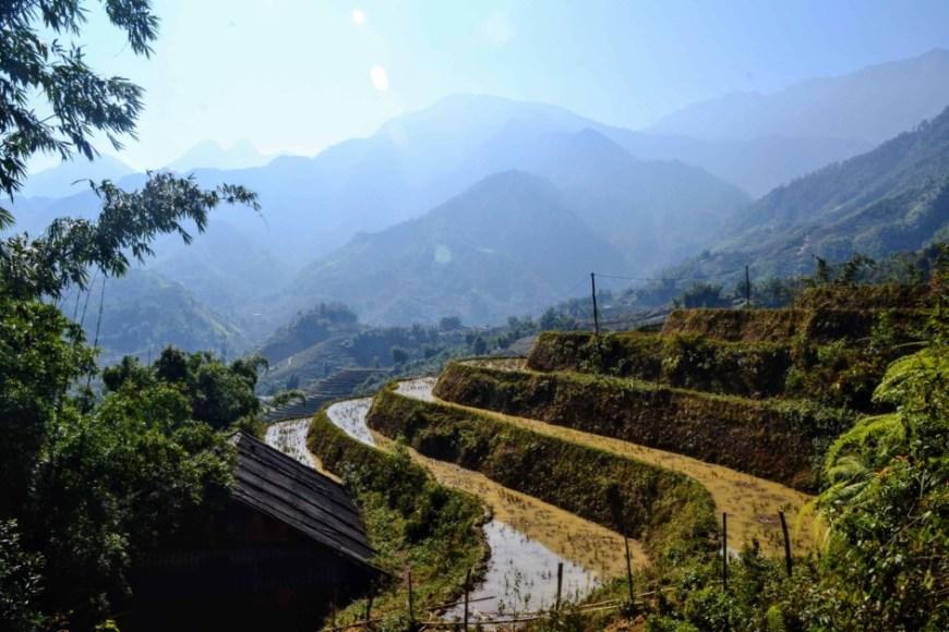sapa-hillside
