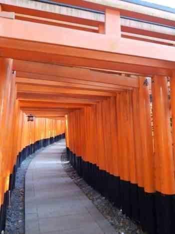 Fushiri Imani temple, Kyoto