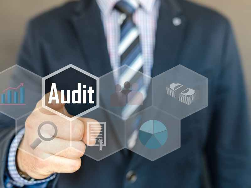Understand who is auditor and what are their roles in the audit of company's financial statements
