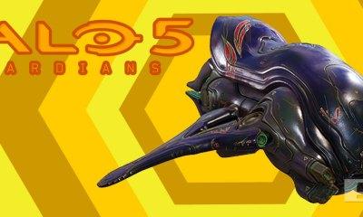 halo 5: guardians. covenant. 343 industries. the action pixel. entertainment on tap. @theactionpixel