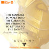 tap quotes, quote,quotes,destiny,halo,bungie, allspring,parables, the courage to walk into the darkness, but the strength to return to the light, the action pixel, entertainment on tap