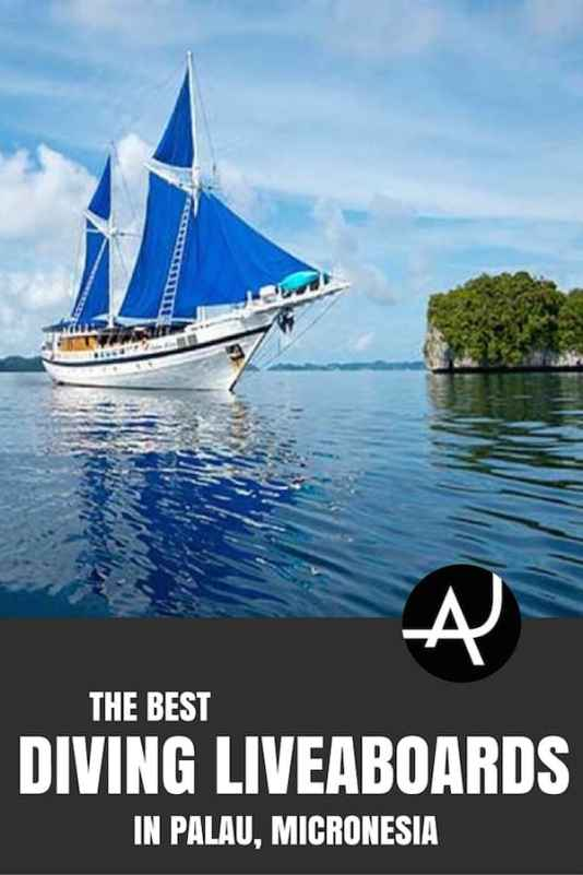 Palau Liveaboard trips
