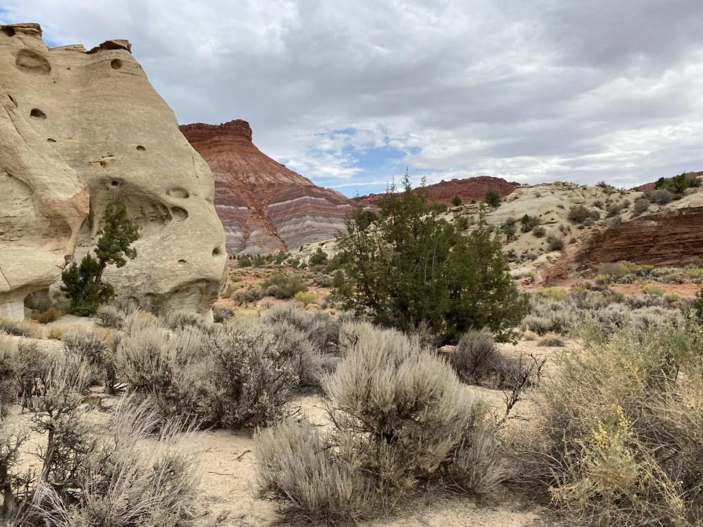 Empty Desert Hiking The Adventure Travelers