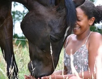 Blossom Tips Do Horses Heal Grief? How Equine Therapy Works