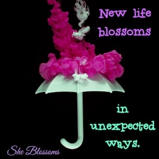 How to Get Over a Love Affair With a Married Man Blossom Tips